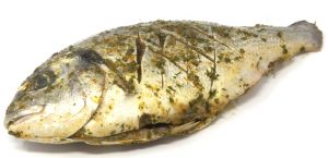 Sea Bream marinated