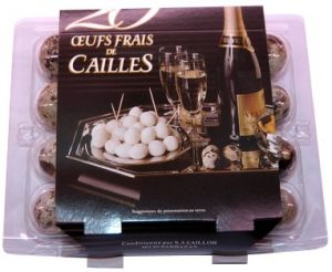 Eggs from caille