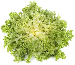 Curly Salad